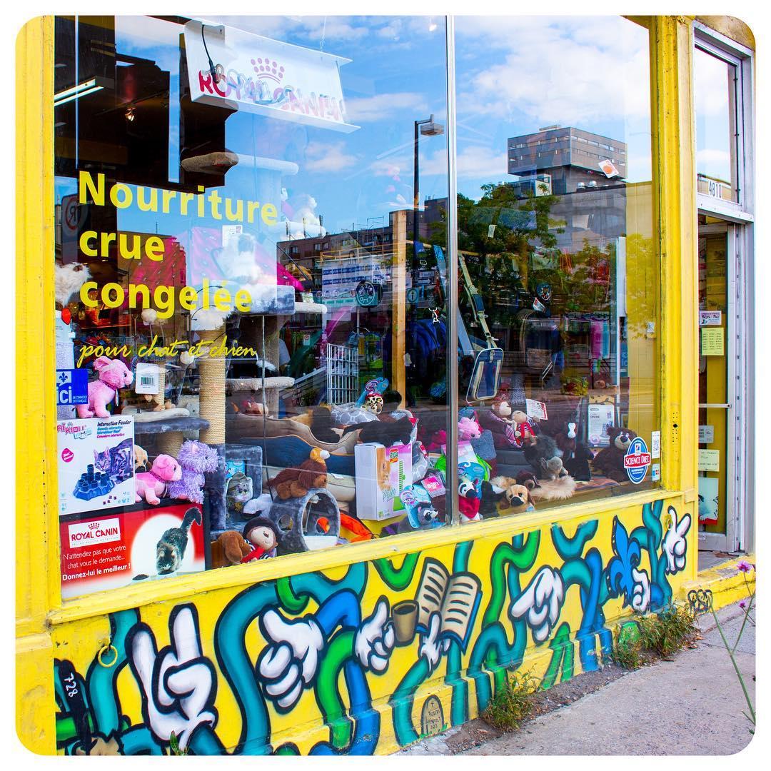 Pattes à Poil pet store in Montréal