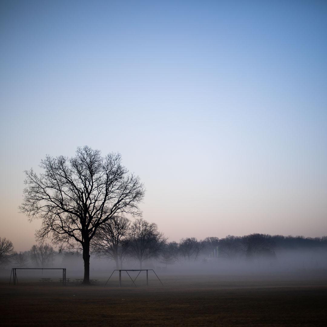 Morning fog.