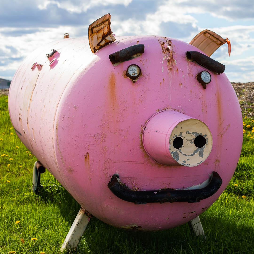 Porky the Propane Pig