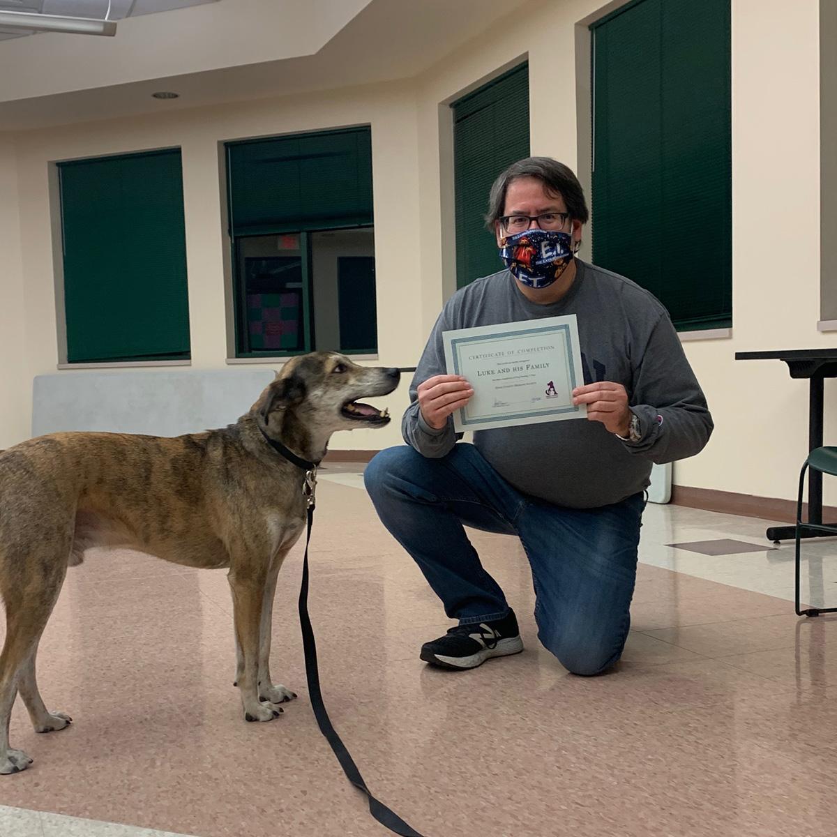 Luke the dog at the Dane County Humane Society