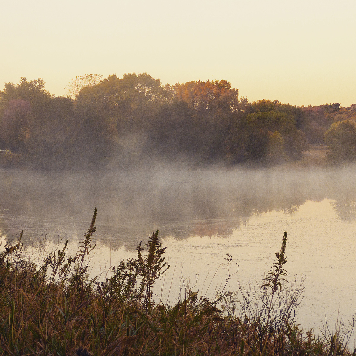 A cloud of mist at McKee Farms Park in Fitchburg, Wisconsin